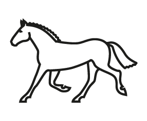 picto cheval