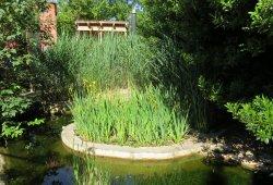 verdure bassin chambre l'accueil naturel